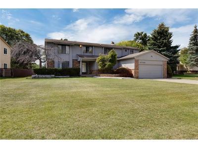 Farmington Hills Single Family Home For Sale: 37753 Hollyhead Drive