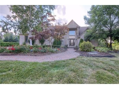 Northville Single Family Home For Sale: 47875 Forest Court