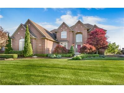 Northville Single Family Home For Sale: 48231 Binghampton Court