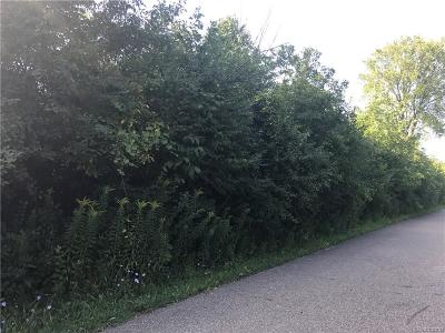 West Bloomfield Twp MI Residential Lots & Land For Sale: $225,000