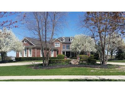 Novi Single Family Home For Sale: 50976 Drakes Bay Drive