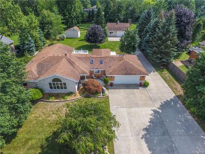 Troy Single Family Home For Sale: 1336 Philatha Drive
