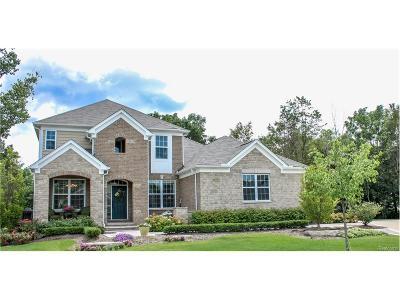 Farmington Hills Single Family Home For Sale: 37837 Ellerly Lane