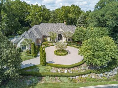 Bloomfield Hills Single Family Home For Sale: 35 Hidden Ridge
