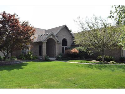 Sterling Heights Single Family Home For Sale