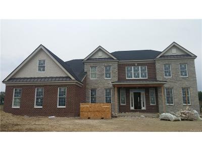 Northville Twp Single Family Home For Sale: 18281 Shagbark Drive