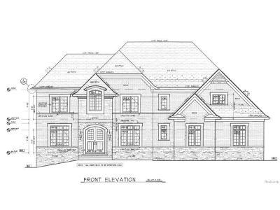 Northville Twp Single Family Home For Sale: 18946 Florissant Drive