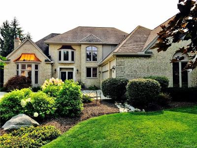 Rochester Hills Single Family Home For Sale: 3691 Merriweather Lane