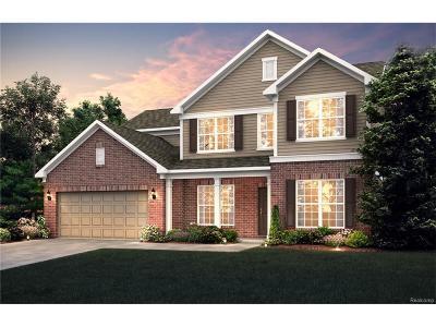 Novi Single Family Home For Sale: 25816 Oberlin Boulevard