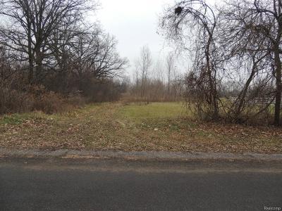 Auburn Hills Residential Lots & Land For Sale: Vinewood