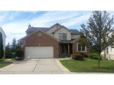 Novi Single Family Home For Sale: 28947 Hearthstone Drive