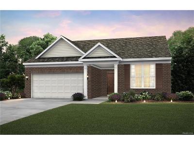 Canton Single Family Home For Sale: 49893 Alden