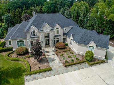 Novi Single Family Home For Sale: 20881 Turnberry Boulevard