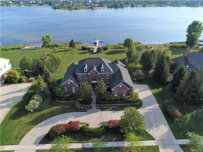 Novi Single Family Home For Sale: 25721 Shoreline Drive