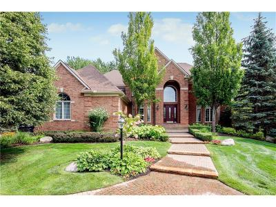 Rochester Hills Single Family Home For Sale: 3871 Walnut Brook Drive