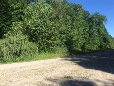 Washington Twp Residential Lots & Land For Sale: 62880 Braun Drive