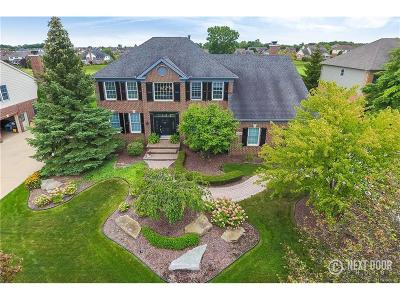 Northville Single Family Home For Sale: 16181 Crystal Downs E