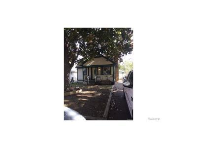 Farmington Hills Single Family Home For Sale: 21314 Saint Francis Street