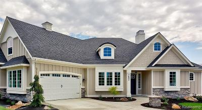 Novi Single Family Home For Sale: 48805 Ten Mile Road