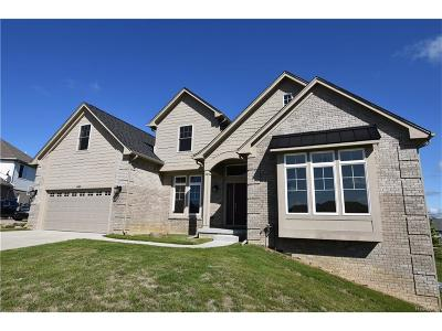 Auburn Hills Single Family Home For Sale: 4489 Cedarhill Court