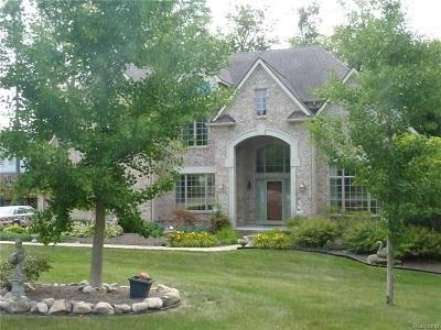 Canton Single Family Home For Sale: 8129 Tilbury Court