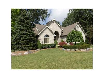 Brownstown Twp Single Family Home For Sale: 25230 Cedar Creek Drive