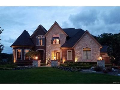 Novi Single Family Home For Sale: 21416 Equestrian Trail