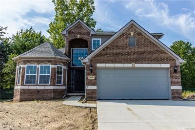Lyon Twp Single Family Home For Sale: 56048 Worlington Lane