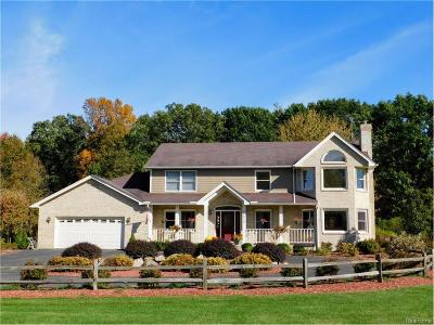 Lyon Twp Single Family Home For Sale: 28020 Haas Road