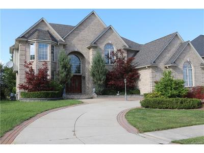 Sterling Heights Single Family Home For Sale: 2135 Meadow Reed Drive