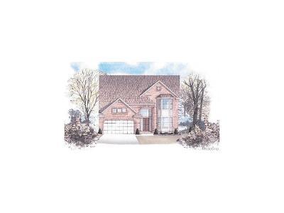 Lyon Twp Single Family Home For Sale: 55833 Sunningdale Drive