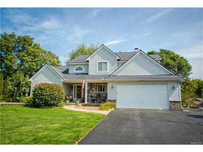 City Of The Vlg Of Clarkston, Clarkston, Independence, Independence Twp Single Family Home For Sale: 6420 Waldon Woods Drive
