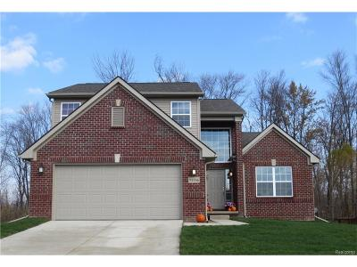 Lyon Twp Single Family Home For Sale: 24410 Westchester Drive