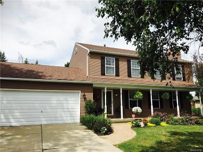 City Of The Vlg Of Clarkston, Clarkston, Independence, Independence Twp Single Family Home For Sale: 6386 Mockingbird Lane