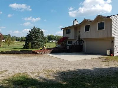 Livingston County Single Family Home For Sale: 4585 W Schafer Road