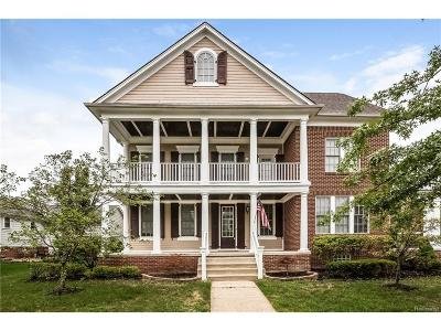 Canton Single Family Home For Sale: 595 McKinley