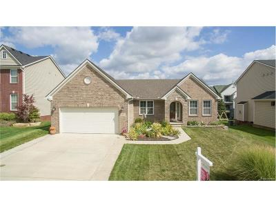 Lyon Twp Single Family Home For Sale: 30052 Cider Mill Drive