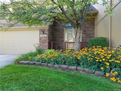 Rochester Hills Condo/Townhouse For Sale: 2203 Rochelle Park Drive