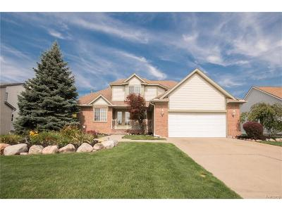 Southfield Single Family Home For Sale: 26746 Isleworth Point