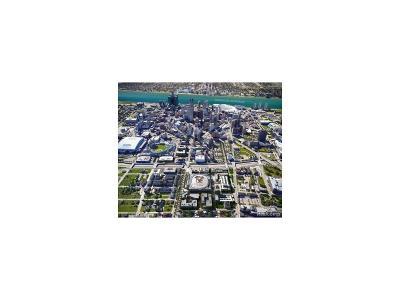 Detroit Residential Lots & Land For Sale: 221 Watson Street