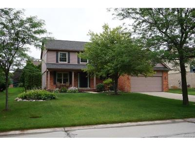 City Of The Vlg Of Clarkston, Clarkston, Independence, Independence Twp Single Family Home For Sale: 6566 Horncliffe Drive