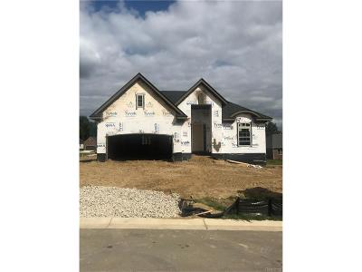 City Of The Vlg Of Clarkston, Clarkston, Independence, Independence Twp Single Family Home For Sale: 5509 Woodfall Road