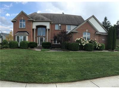 White Lake, White Lake Twp Single Family Home For Sale: 8255 Woods Edge