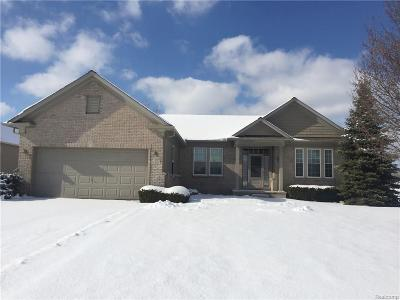 Brownstown Twp Single Family Home For Sale: 24142 Grand Traverse Avenue