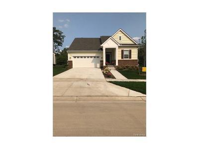 Lyon Twp Single Family Home For Sale: 29891 Thistle Lane