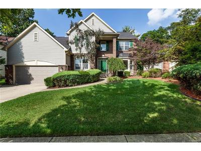 Farmington, Farmington Hills Single Family Home For Sale: 29246 Autumn Ridge