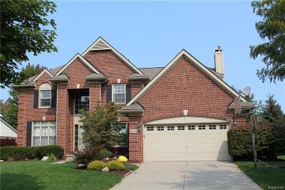 Novi Single Family Home For Sale: 41146 Scarborough Lane