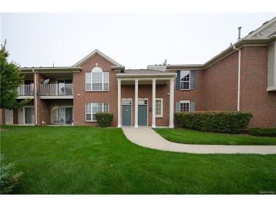 Commerce Twp Condo/Townhouse For Sale: 11208 Farmingdale Lane #128