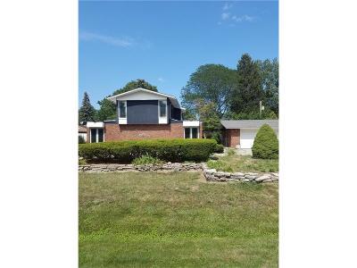 Southfield Single Family Home For Sale: 24558 N Carolina Street