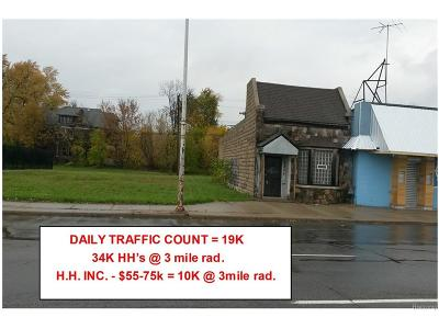 Detroit MI Commercial Lots & Land For Sale: $150,000